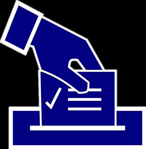 votazioni.png