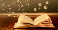 SERVIZIO AL PUBBLICO BIBLIOTECA COMUNALE